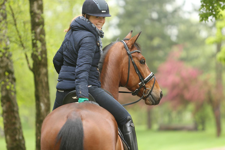 Verkaufspferde und Pferdekauf erfordern Vertrauen.
